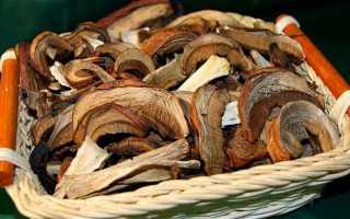 Как сушить грибы в домашних условиях правильноКак сушить грибы в домашних условиях правильно: как приготовить, советы