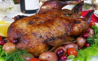 Блюда из утки: как приготовить, советыБлюда из утки: как приготовить, советы: как приготовить, советы