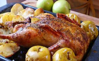 Утка с яблоками в рукаве для особых случаев: как приготовить, советыУтка с яблоками в рукаве для особых случаев: как приготовить, советы: как приготовить, советы