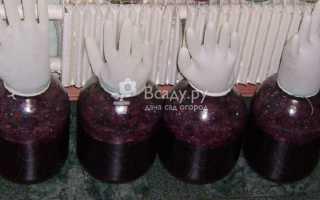 Как сделать вино из забродившего вареньяКак сделать вино из забродившего варенья: как приготовить, советы