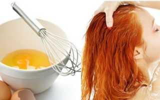 Яичная маска и шампунь из желтка для роста волос – как пользоваться и будет ли результат