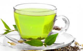 Зеленый чай: полезные свойства и противопоказания
