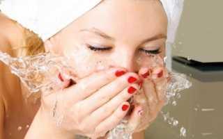Правила ухода за жирной кожей лица в домашних условиях