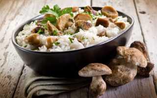 Ризотто с овощами и грибами: как приготовить, советыРизотто с овощами и грибами: как приготовить, советы: как приготовить, советы