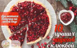 Пирог с замороженной клюквой: как приготовить, советыПирог с замороженной клюквой: как приготовить, советы: как приготовить, советы