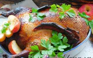Как приготовить утку в утятницеКак приготовить утку в утятнице: как приготовить, советы