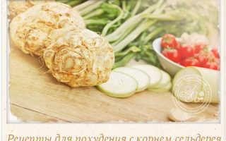 Корень сельдерея, простые рецепты приготовления: дешево, вкусно и худеем