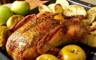 Запечённая утка с гречкой и яблоками: как приготовить, советыЗапечённая утка с гречкой и яблоками: как приготовить, советы: как приготовить, советы