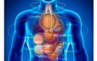 Всё о железах и гормональной системе