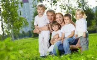 Какие льготы положены многодетной матери по закону?