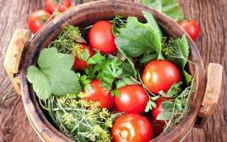 Быстрая засолка помидоров: как приготовить, советыБыстрая засолка помидоров: как приготовить, советы: как приготовить, советы