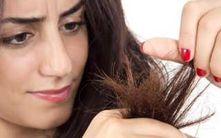 Сухие кончики волос: причины появления и меры устранения