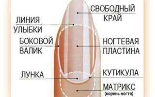 С какой скоростью растут ногти и как на это повлиять?