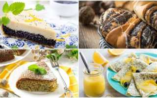 Маковый торт: самые вкусные и оригинальные идеи приготовления праздничного лакомстваМаковый торт: самые вкусные и оригинальные идеи приготовления праздничного лакомства: как приготовить, советы