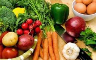 Вегетарианство – все за и против