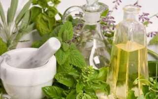 Какие травы помогают от перхоти, зуда и выпадения волос – основные рецепты отваров